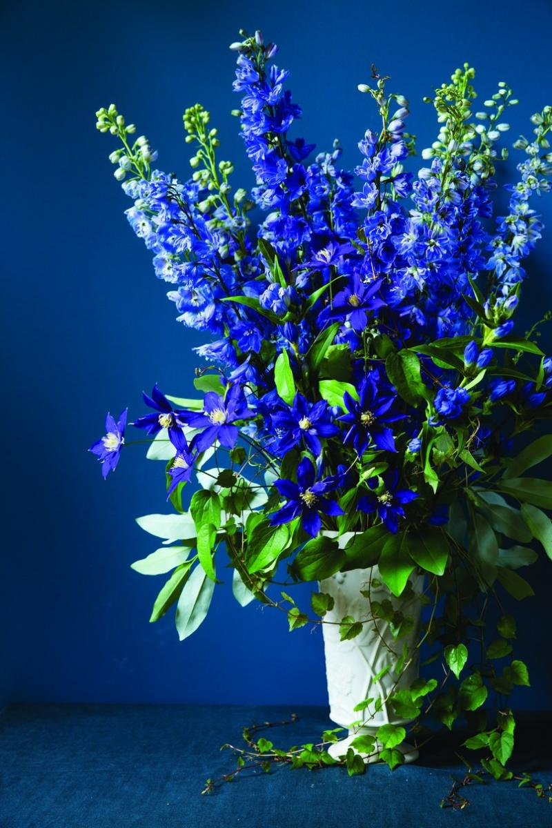 Design tips omero home for Flower arrangements with delphinium
