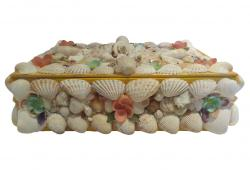 Sea Shell Box with Satin Lining