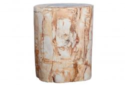 Side Table or Pedestal in Petrified Wood