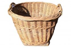 Tall Vintage French Gathering Basket