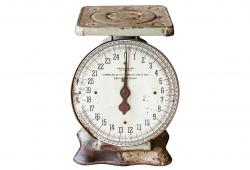 Vintage General Store Scale