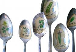 Vintage  Illustrated Herb Plant and Garden Spoon Markers